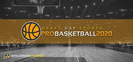 Free Download DRAFT DAY SPORTS PRO BASKETBALL 2020 PC Game
